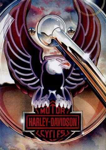 placa decorativa(5936) harley-davidson hd moto aguia