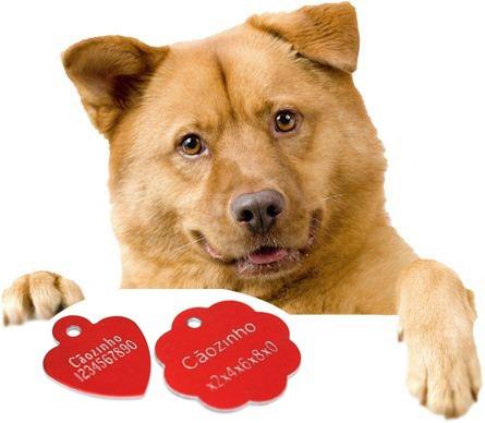 placa dog tag identificação pet p/ coleira cão