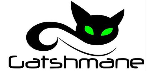placa exitadora studio r bx montada simplificada gatshmane