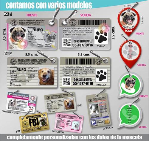 placa identificacion mascotas