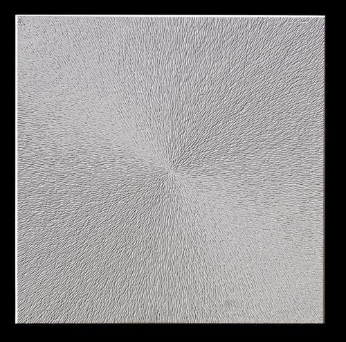 placa yeso antihumedad cielorraso techo 60x60 cm varios