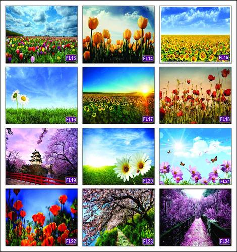 placas decorativas flores jardins paisagens  decoração