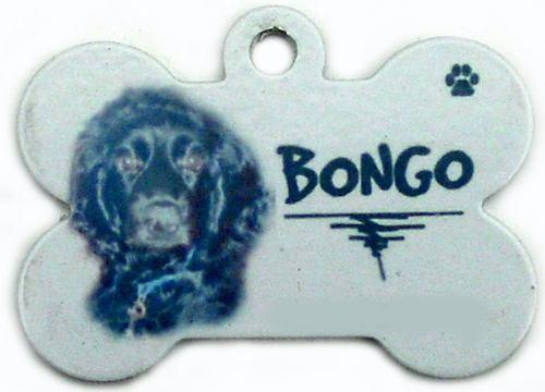 placas para mascotas a todo color perros gatos cachorros