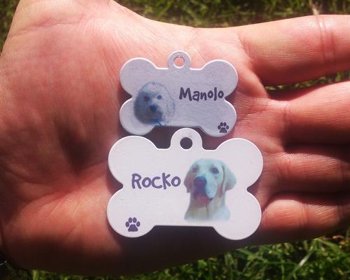 placas para perros foto a color identificación mascotas gato
