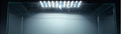 plafon luz led para acuarios f60 hasta 100 lts