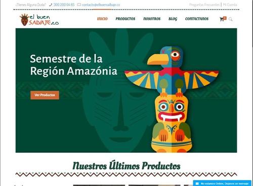 plan tienda plus - diseño web - dypweb