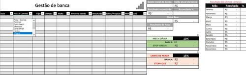 planilha automatizada gestão de banca galgos