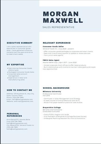 planilla de currículum vitae + redacción + asesoria