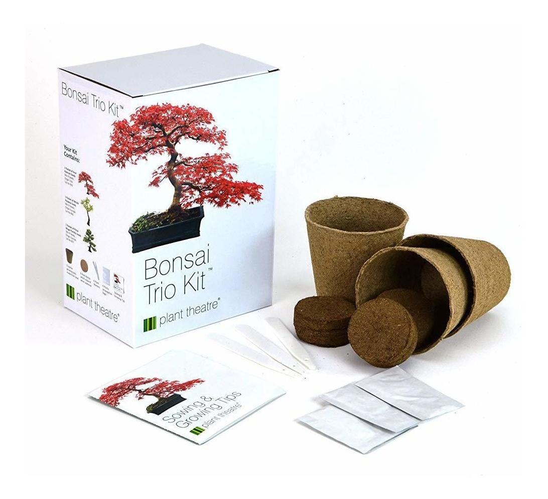 3 /árboles de Bonsai distintivos para crecer. Plant Theatre Kit Bonsai Trio