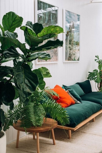 planta artificial ficus lyrata 1.65m