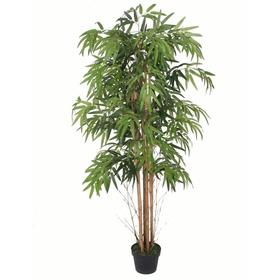 Planta Bambu Caule Natural 150cm 1095 Folhas Frete Grátis