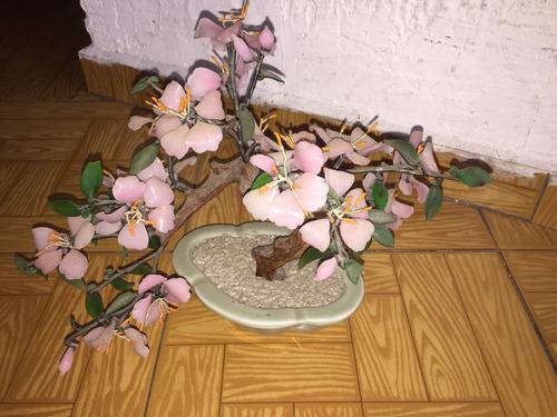 planta de flores de jade chino
