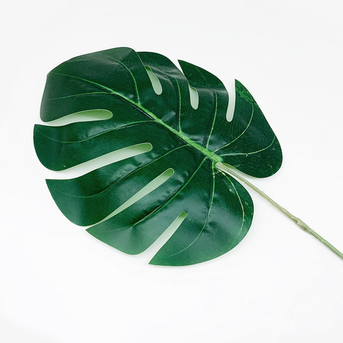 planta hoja artificial monstera costilla adán