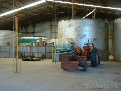 planta industrial cerealera de 3.200 m2 totales cubierto , sobre 30.000 m2 de terreno