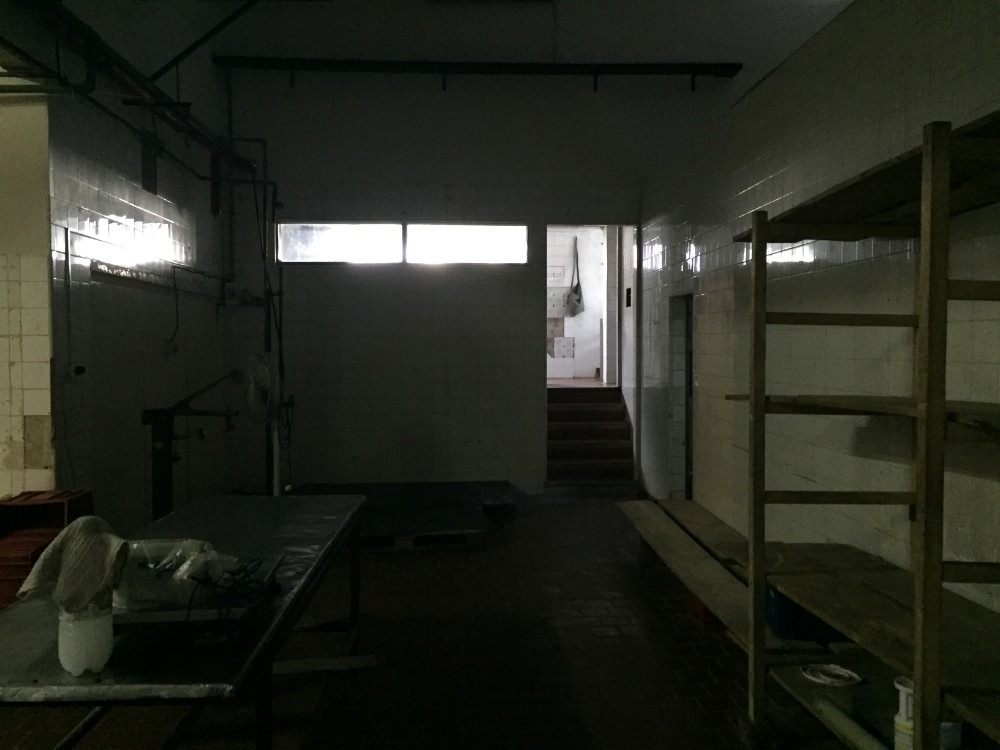 planta industrial con importante casa de época en n helvecia