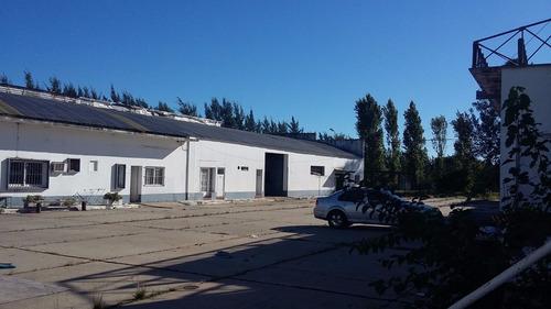 planta industrial ex frigorífico pacheco