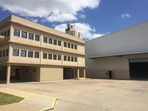 planta industrial nueva de 5.000 m2 cubiertos totales