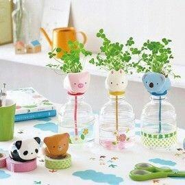 planta maceta botella decoración hogar oficina panda