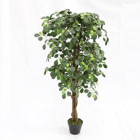 Planta Permanente Árvore Prosperidade Caule Natural 125cm