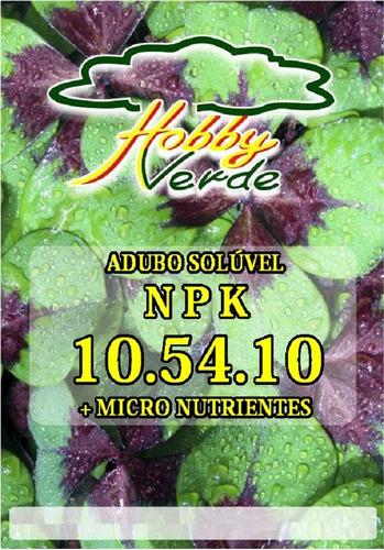 plantafol 10.54.10 adubo npk para floração rosa deserto 250g
