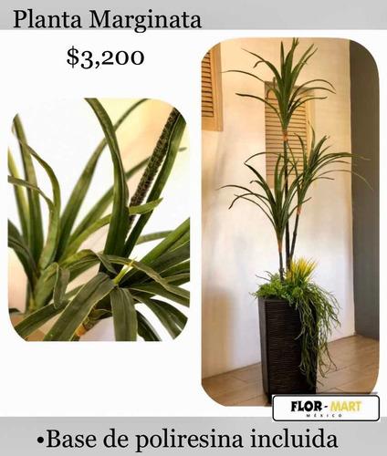 plantas artificiales de apariencia real con maceta incluida!