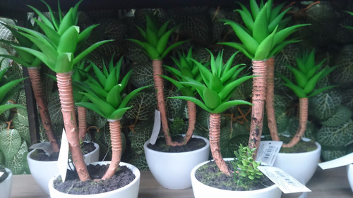 Plantas artificiales decorativas dise o cactaseas - Plantas artificiales decorativas ...