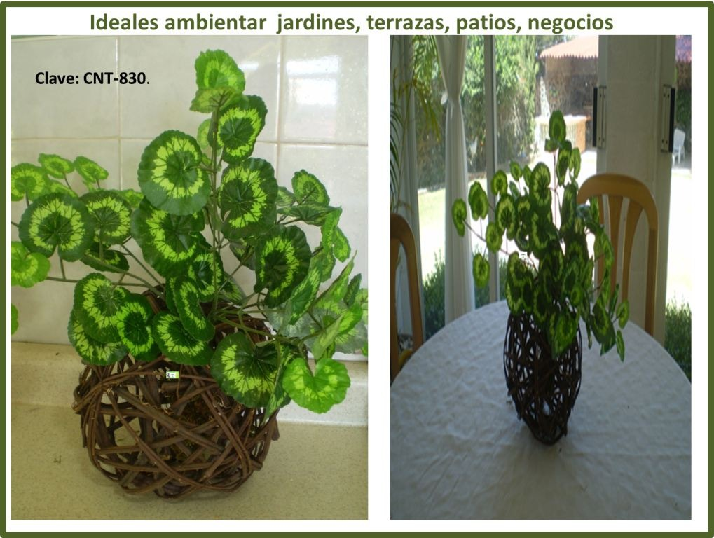 Plantas chicas artificiales daa en mercado libre for Plantas artificiales