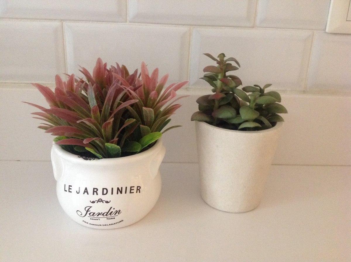 Plantas de interior decorativas cuidados de las plantas for Plantas decorativas