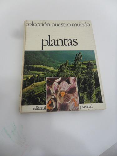 plantas  editorial juventud