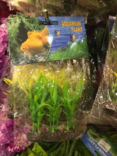 plantas para acuarios/ peces/ peceras