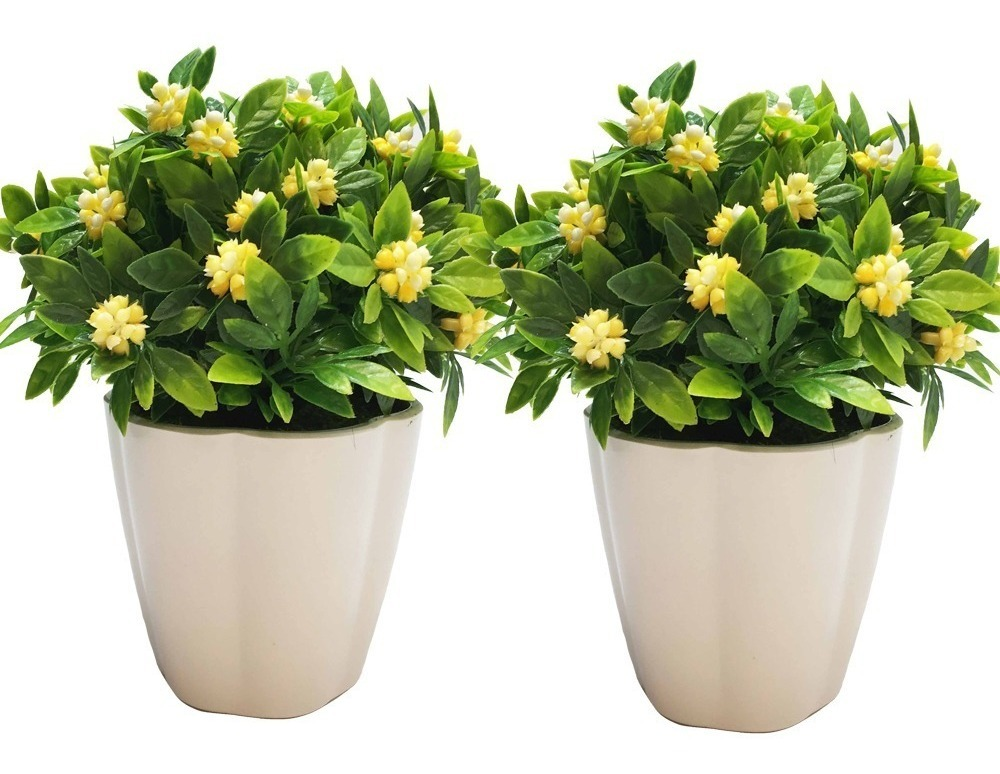 Plantas 2 Artificial Decorativa Gardenia En Maceta 18 Cm 736 00