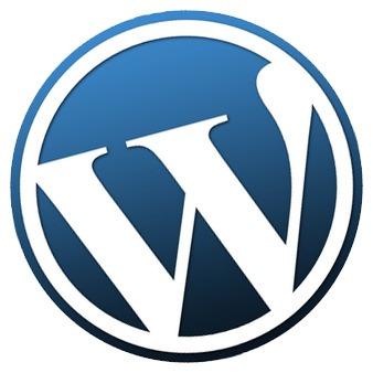 plantilla wordpress   premiun   nuvo