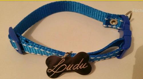 plaquinha identificação cor prateada pet dog tag gravada