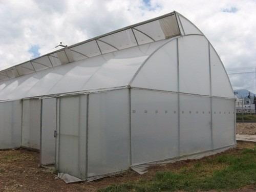 Plastico de techo para invernadero con proteccion u v bs for Como disenar un vivero