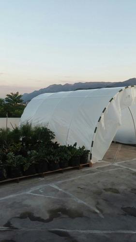 plástico invernadero con protección uv2 corte de 6.20x8 mts