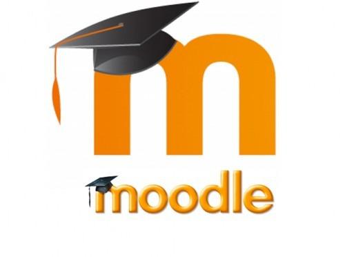plataforma de moodle personalizada, montaje, questionarios.