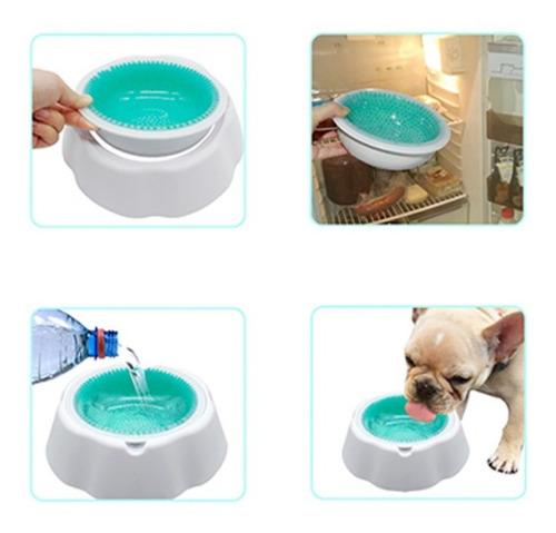 plato para mascotas conserva el agua fria y fresca
