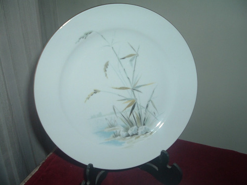 platos de porcelana bavaria