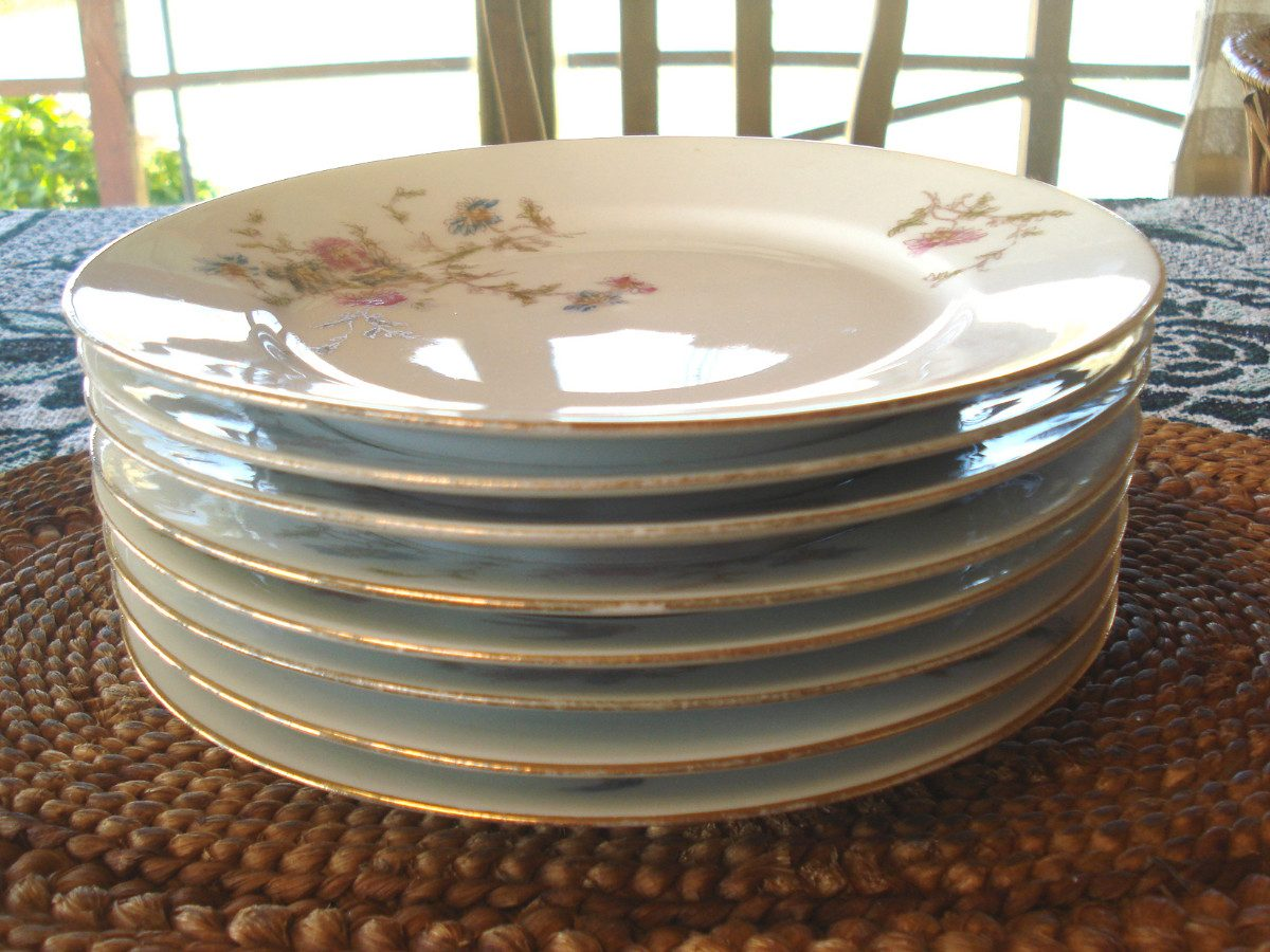 Platos lunch porcelana limoges martin redon 250 00 en for Platos porcelana