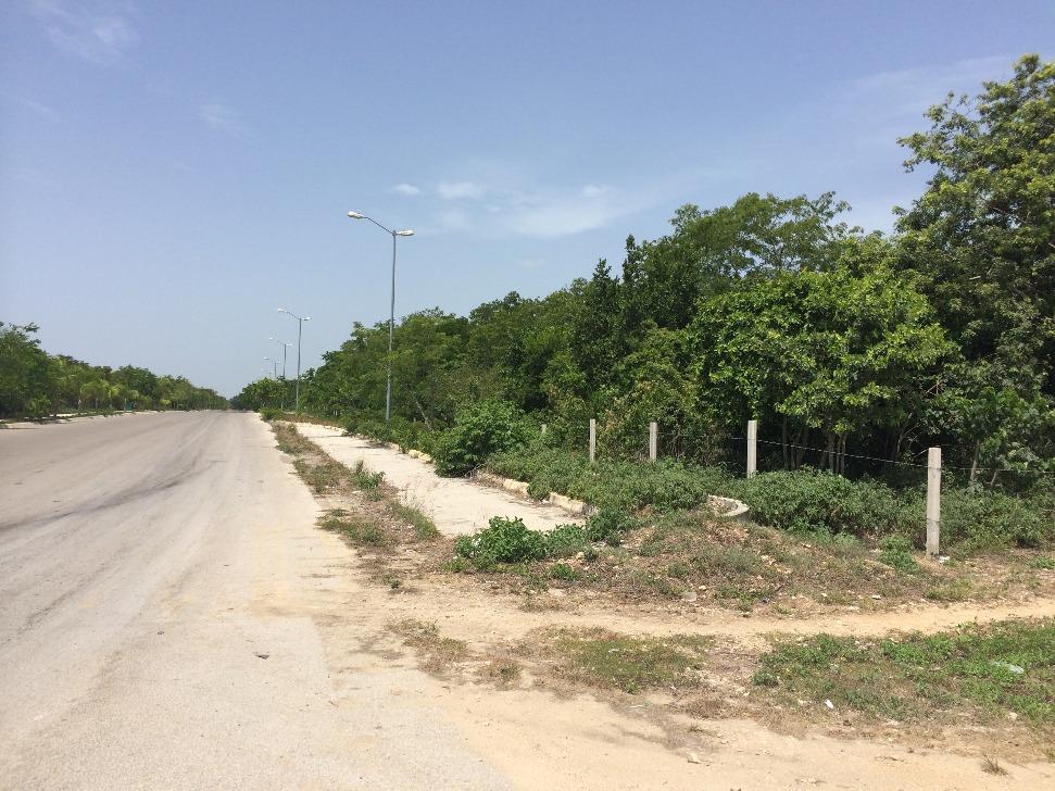 playa del carmen 13.5 hectareas colinda con desarrollo arrecifes