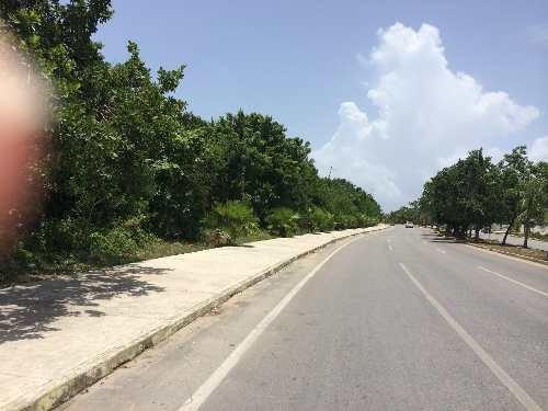 playa del carmen, lote de 68,000 m2 sobre la avenida constituyentes