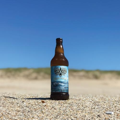 playa grande caja x 12 cerveza artesanal antares bot 500ml