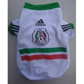 4142377affa00 Ajolote Mexicano - Animales y Mascotas en Mercado Libre México