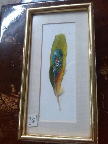 pluma de coleccion pintada a mano con cuadro