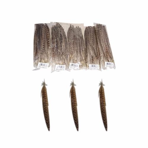 plumas de faisán naturales