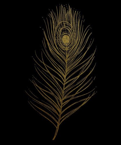 plumas doradas, triptico  cuadro decorativo lienzo canvas
