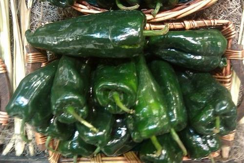 poblano ancho chili pepper pimenta sementes legitimas de usa