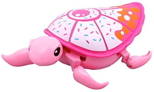 poco vivo admiten tortuga - sundae