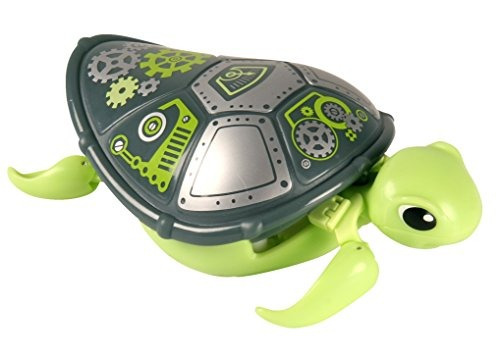 poco vivo admiten tortuga - tornillos