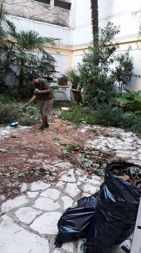 poda de árboles, extracción, talas. limpieza de terreno